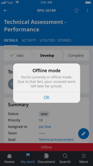 Offline Case detail