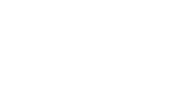 logo state of maine